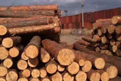 木材专业防霉方案,艾浩尔专业防霉防潮防水