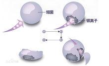 工业银离子抗菌剂作用与运用范围
